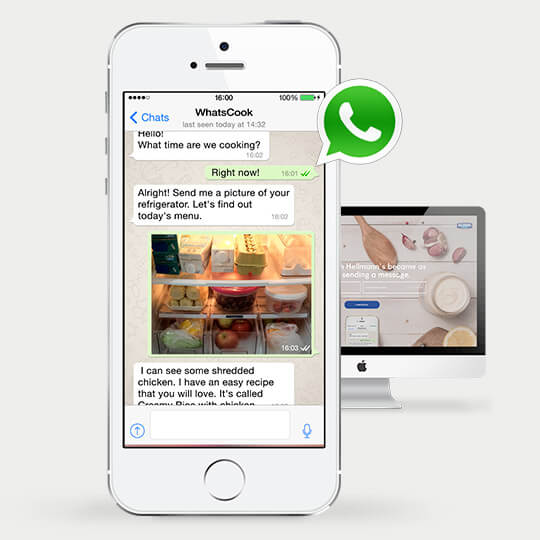 hellsman-whatsapp-marketing