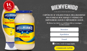 ejemlo-dos-blended-marketing-hellmann