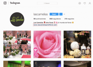 ejemplo-instagram-marketing-digital-negocios-locales