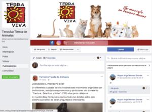 ejemplo-pagina-facebook-marketing-digital-negocios-locales