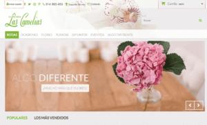 ejemplo-web-marketing-digital-negocios-locales